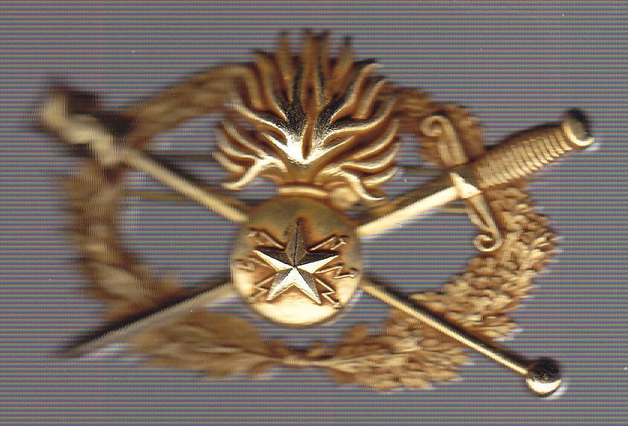diplome qualification superieure gendarmerie